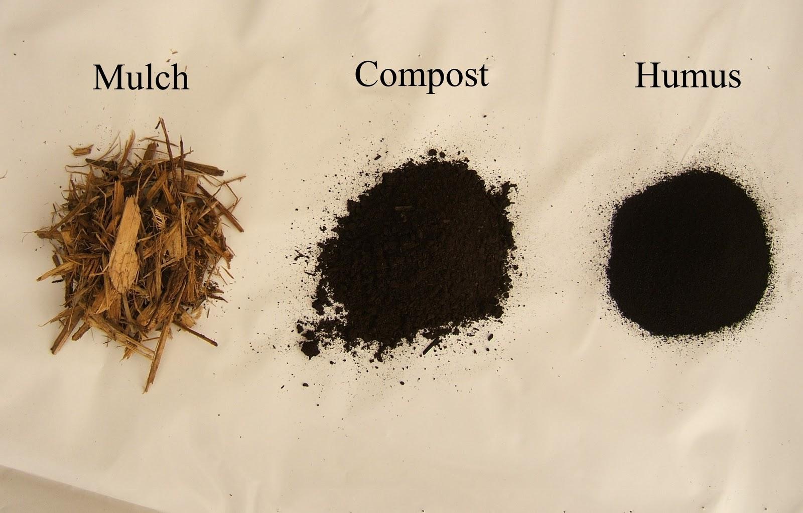 Trees that please nursery january 2012 for Mineral soil vs organic soil