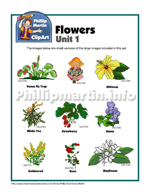 http://www.teacherspayteachers.com/Product/Clip-Art-Flowers-Unit-1