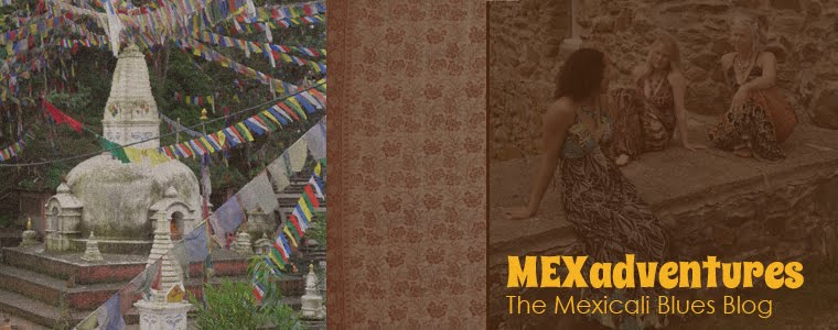 Adventures with Mexicali Blues