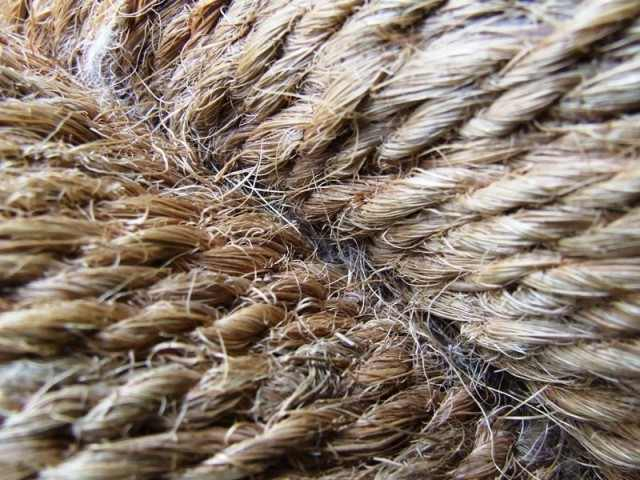 bangladesh jute industry problems Multi unionism is one of the major problems faced by jute industry and bangladesh jute industry of jute industry the future of jute.