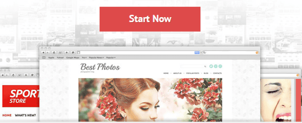 TemplateMonster WordPress Themes