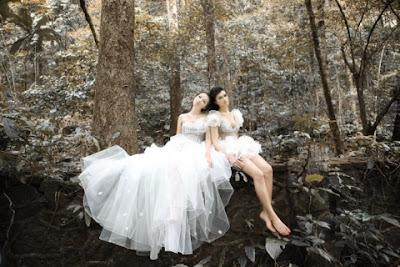 Wedding Dresses 2011