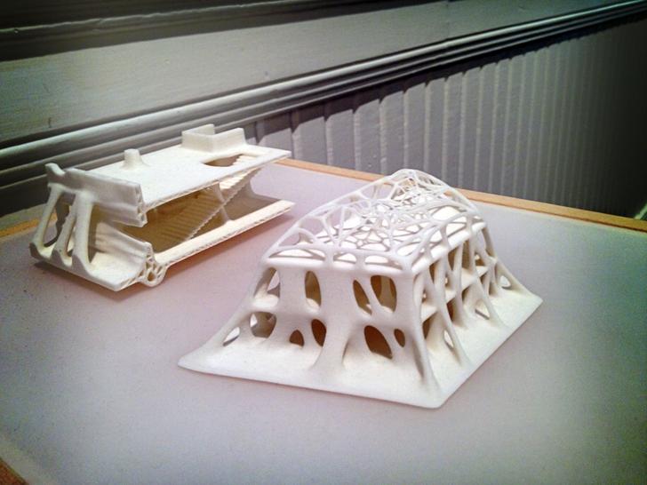 Printed model