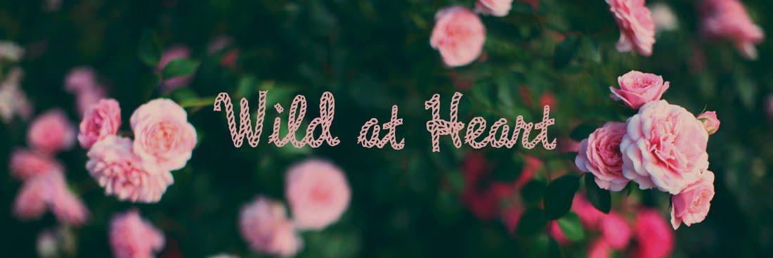 *Wild at Heart*
