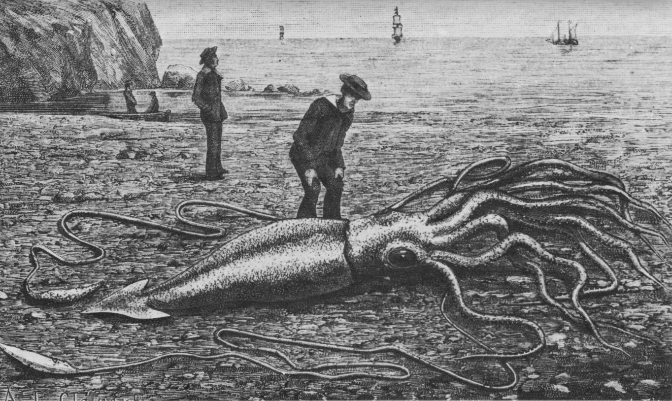 The Cellular Scale: How big is the GIANT Squid Giant Axon?