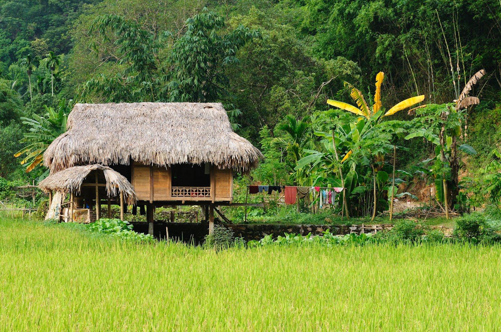 One of the most prestigious resorts in the dominican for Casa del campo