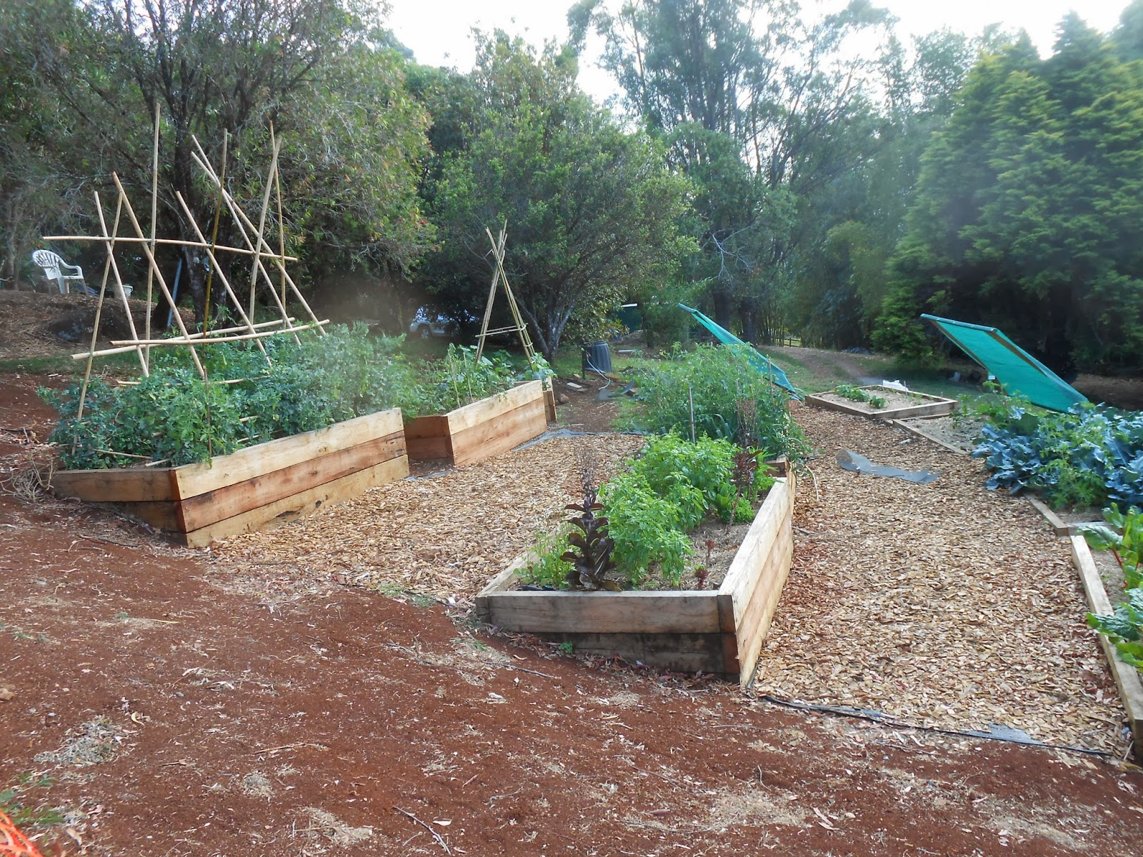 Raised Garden Beds On A Hill