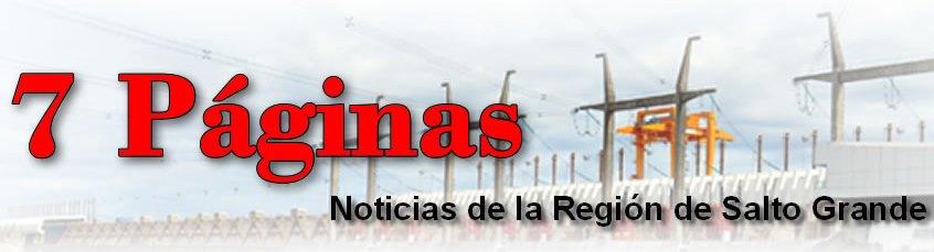 Diario Digital 7 PAGINAS