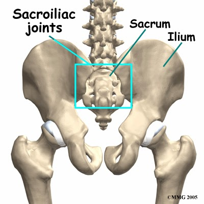 outer universe to inner universe: Sacrum - the holy bone