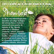 Decodificacion Bioemocional