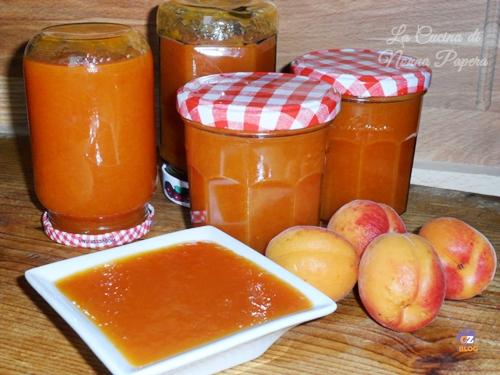 marmellata di albicocche ricetta tradizionale
