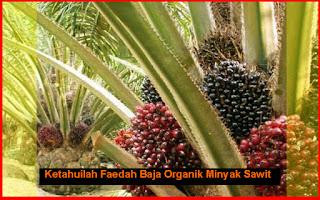 Faedah Baja Organik Kelapa Sawit