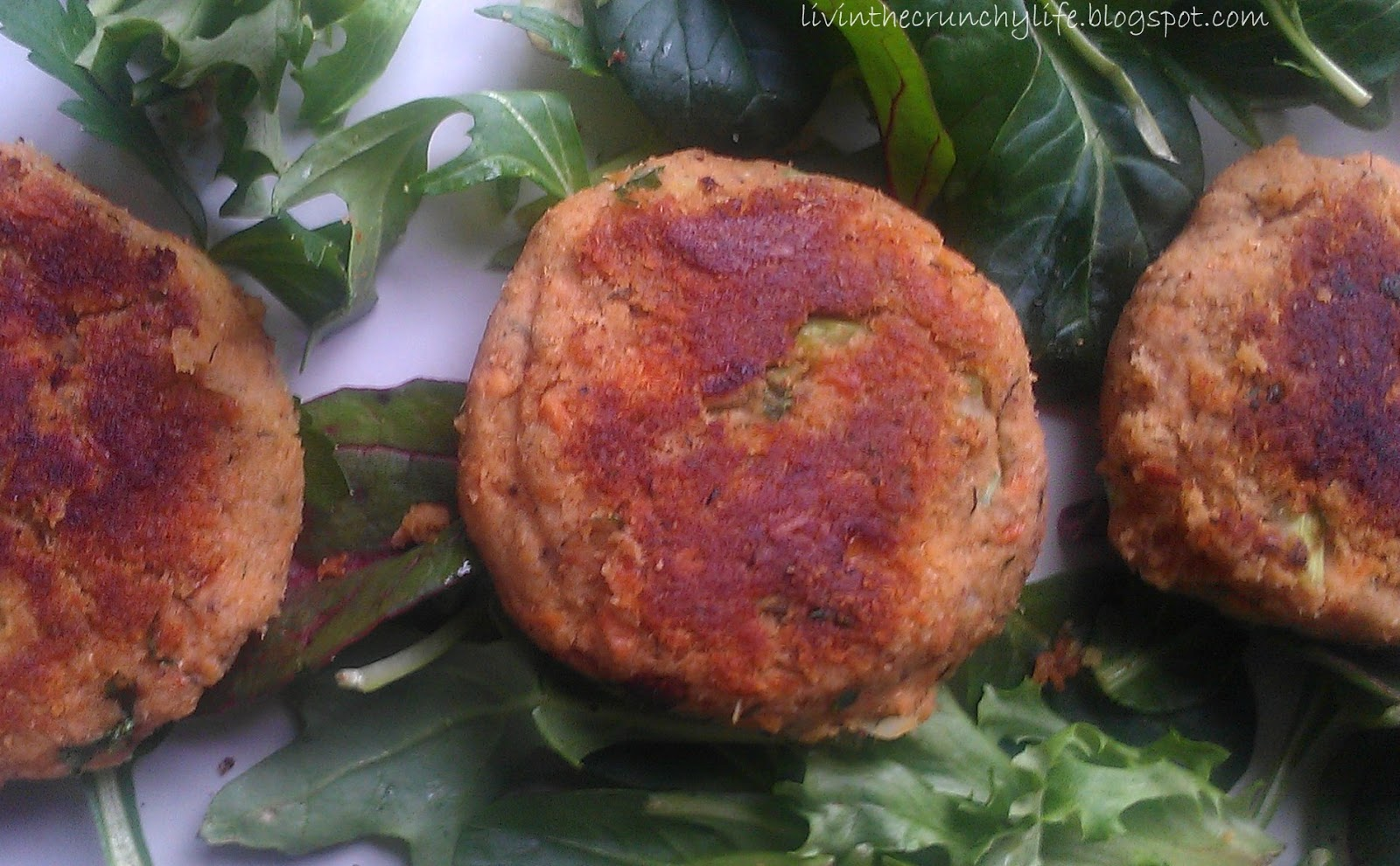 Homemade Seafood Seasoning (plus make-your-own Celery Salt) | Livin ...