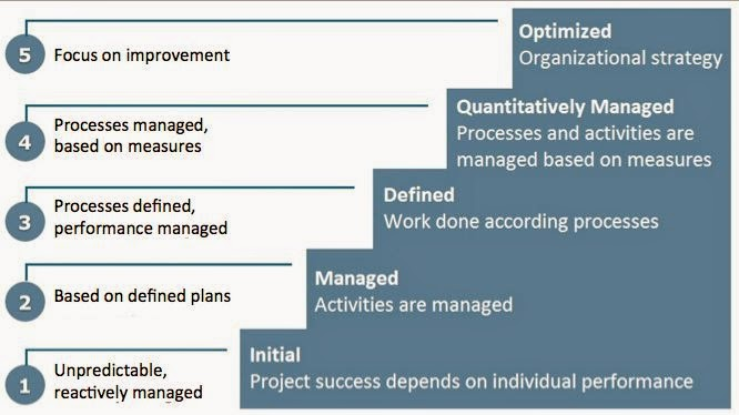 Musings on project management: Maturity model