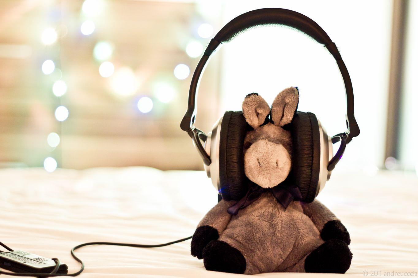 Müzik müzik dinlemek oyuncak