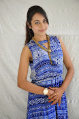 Khenisha Chandran at Jaganatakam press meet-thumbnail-10