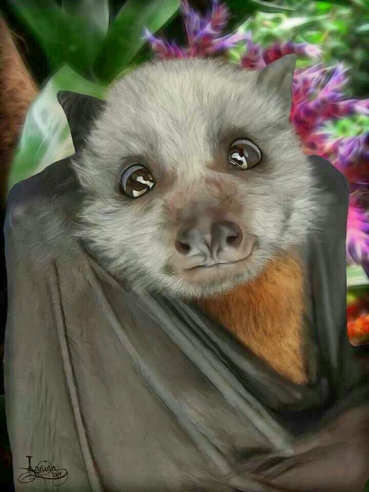 Random Bats