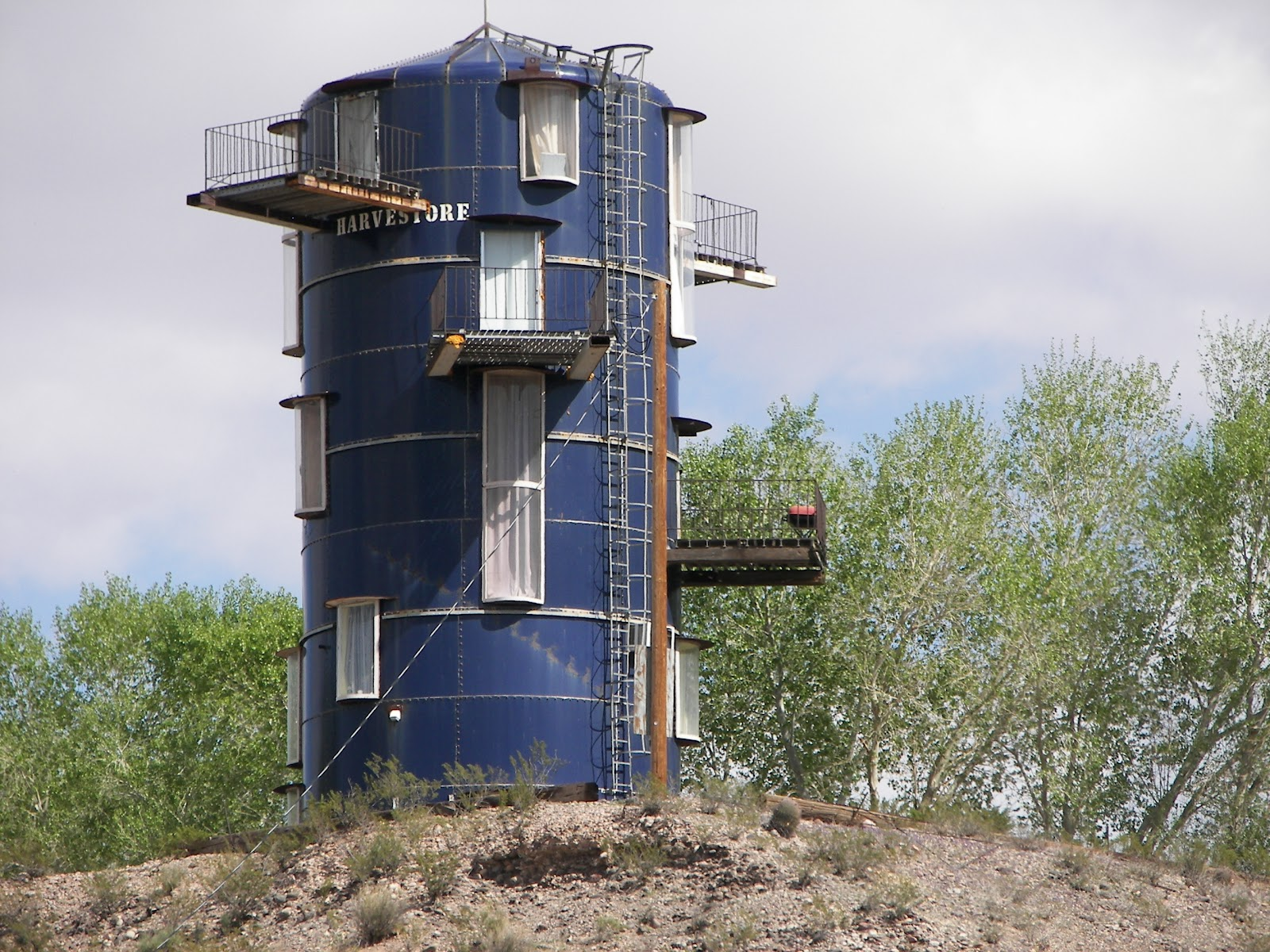 Questions on dogs and cats do animals get sunburned for Homes made from silos