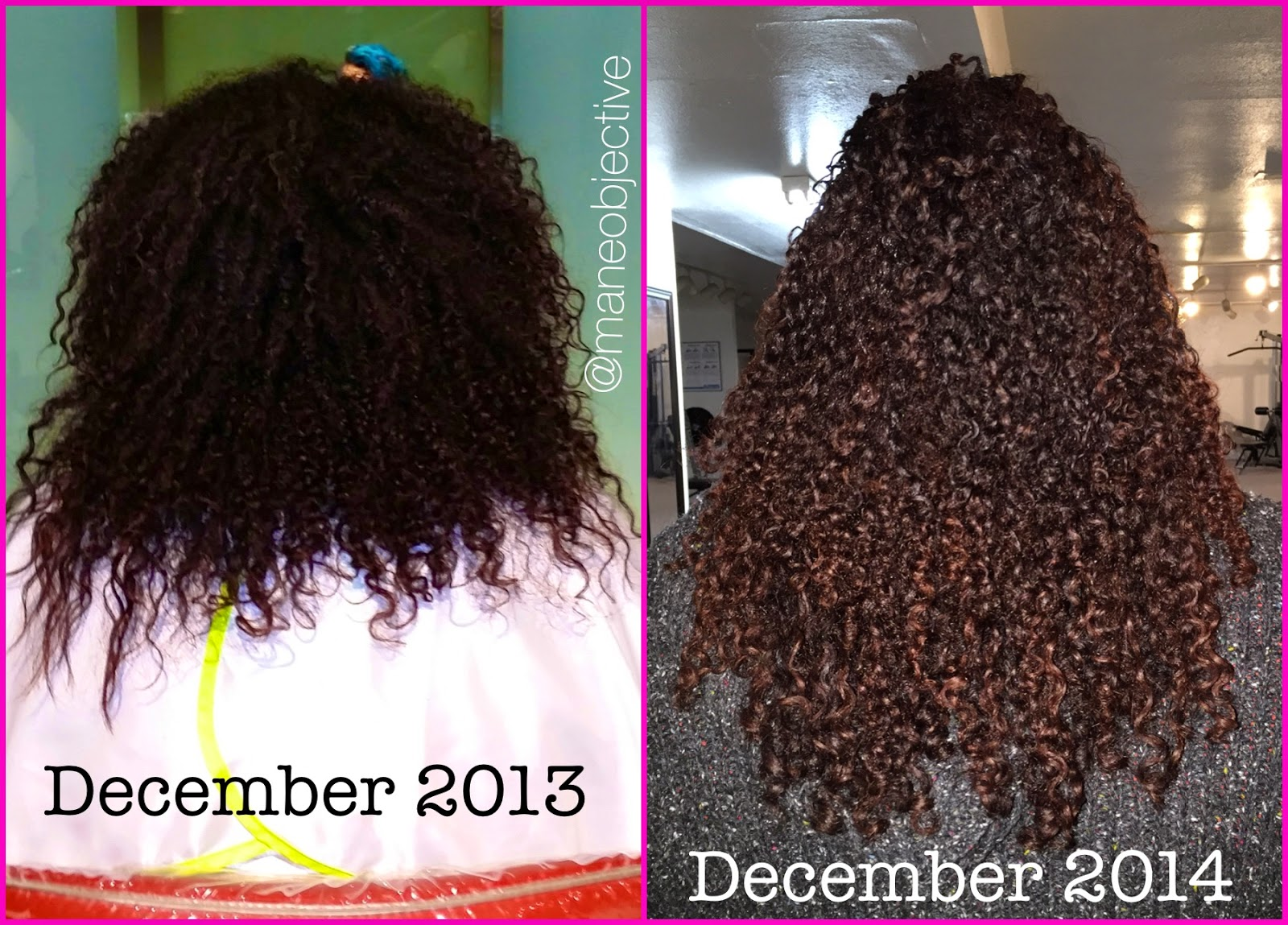 The Mane Objective: 10 Critical Lessons I Learned During My 2-Year ...