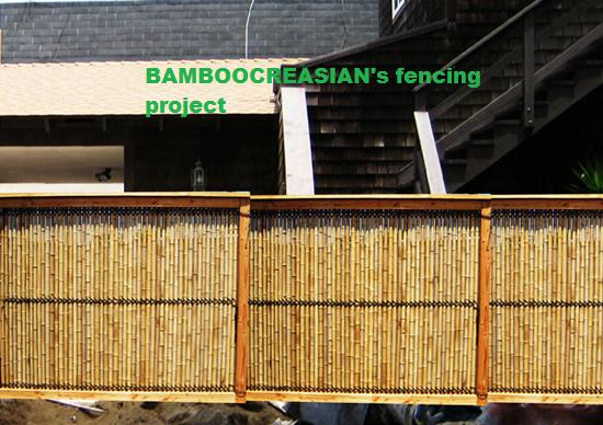 U003dAvailable Bamboo Products  Decorative Bamboo, Bamboo Fencing, Bamboo  Wainscot Ply Paneling, Bamboo Poles For Construction Building . ...