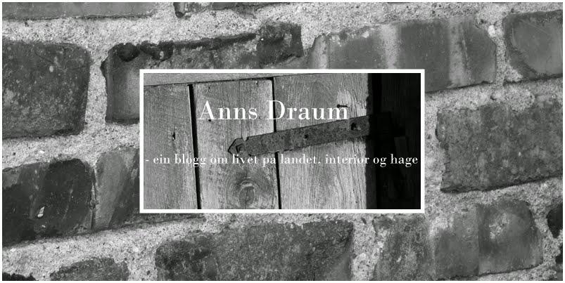 Anns Draum