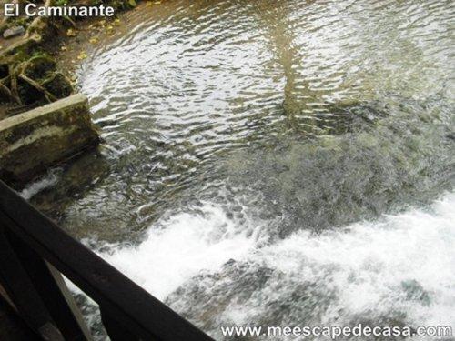 Naciente del Río Tioyacu fotografiado desde el puente (Rioja, Perú) 1