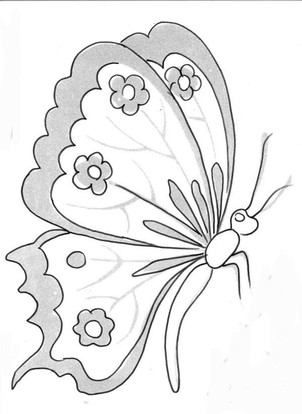 Artesanato diversão e prazer Riscos de borboletas para pintura