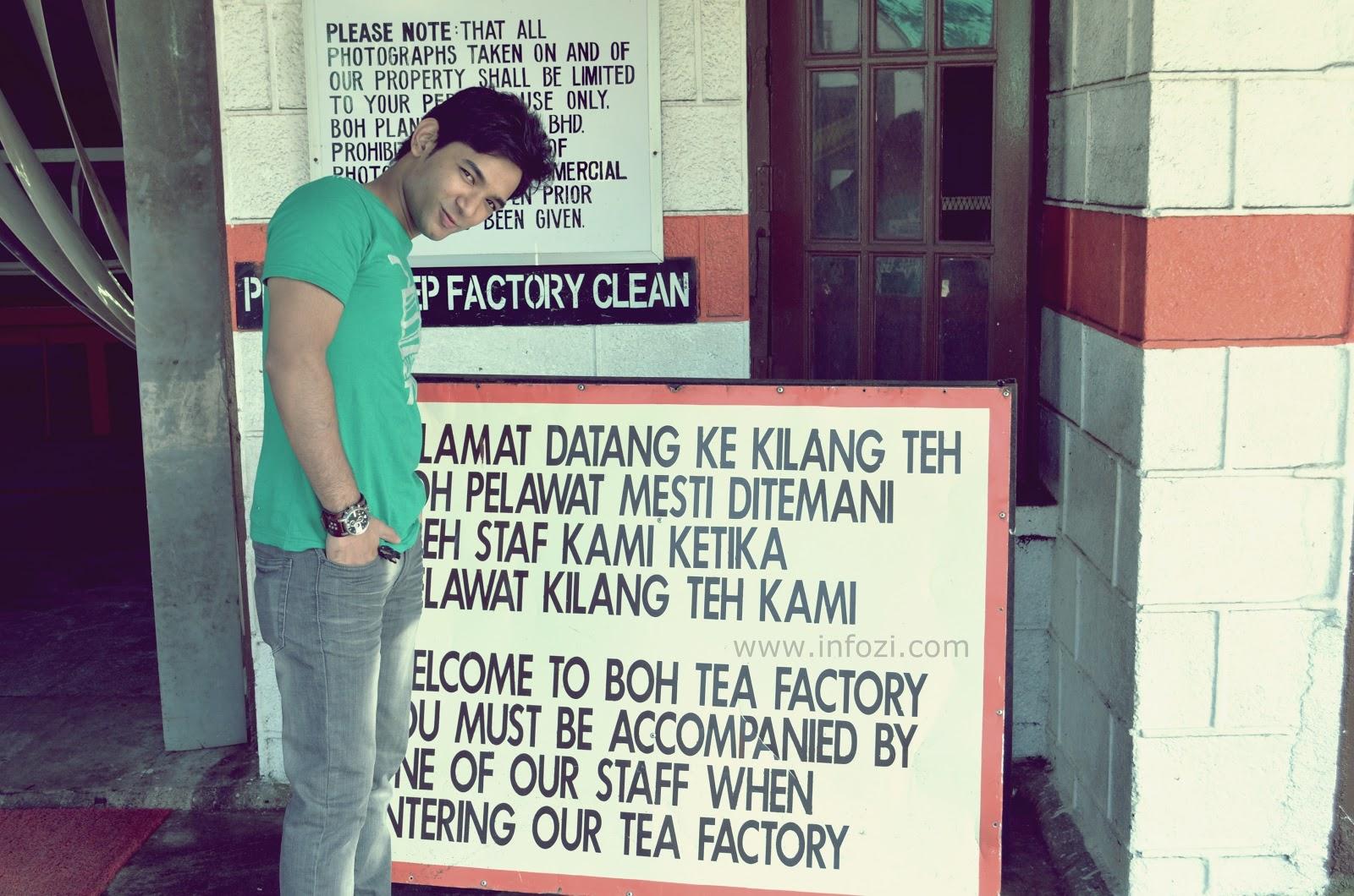 Kilang teh