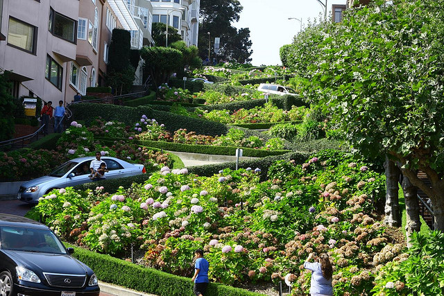 World's Most Crooked Road Lombard St.