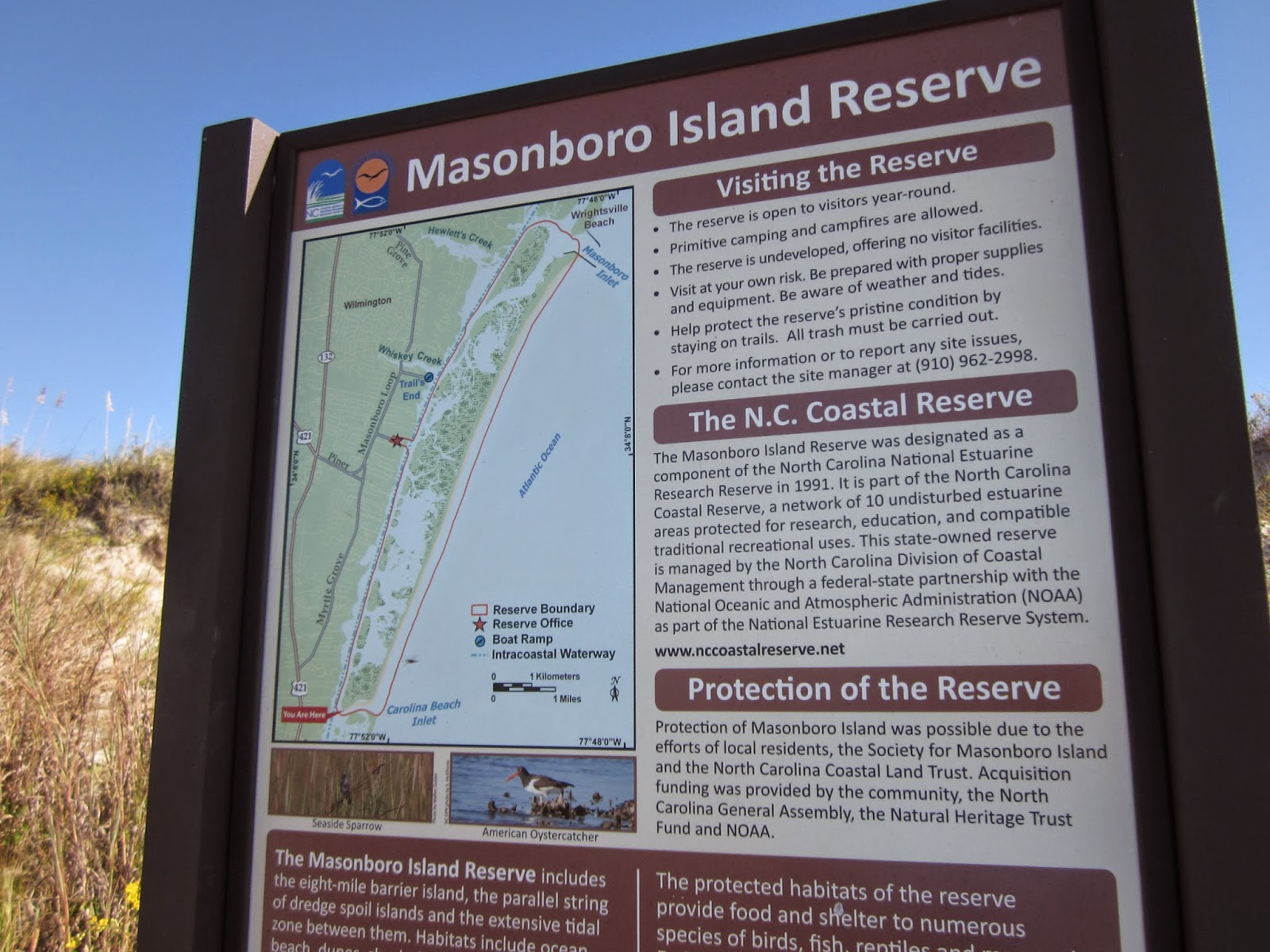 Paddlenc the sound side of masonboro island tends to mudflats and salt marsh at low tide if you dont time your trip just right nvjuhfo Choice Image
