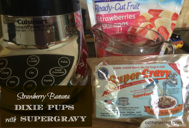 Oz the Terrier dog treat recipe | Strawberry Banana Dixie Pups with SuperGravy