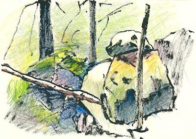 arbres, rochers, forêt de Fontainebleau, feutre pinceau, crayons de couleur, felt pen, colored pencils