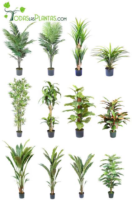 Nuevos modelos agosto 2012 decoraci n con plantas artificiales - Decoracion con plantas artificiales ...