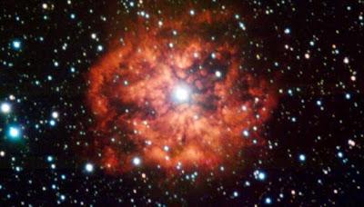 O que são estrelas do tipo  Wolf-Raye?