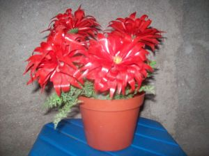 Ada 2 cara untuk membuat bunga dari Sedotan: