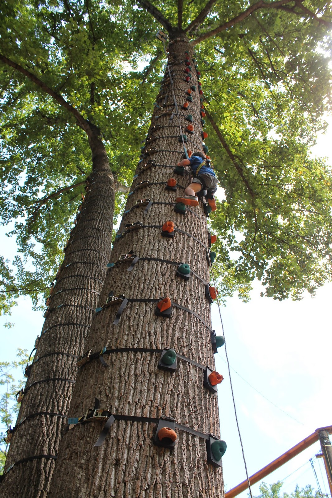 Family Fun In Md And Beyond The Adventure Park At Sandy Spring Md
