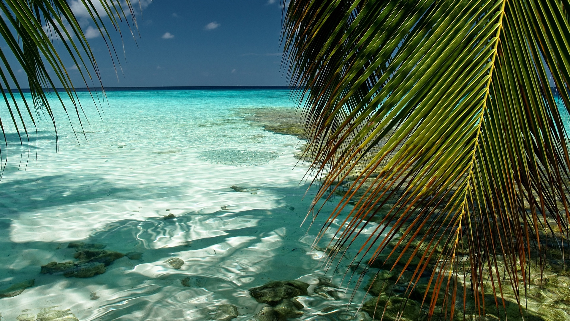 http://1.bp.blogspot.com/-VQjp3Vv79N4/UIq3qTV0o3I/AAAAAAAAM8M/EQ4c0MSHFCc/s0/south-male-atoll-1920x1080.jpg