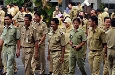 Info CPNS Kabupaten Luwu Timur