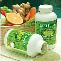 Jual Makanan Organik Melilea - Bungo