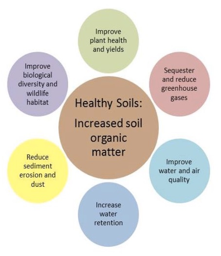 Organic wines uncorked live soil health summit today at for Soil organic matter