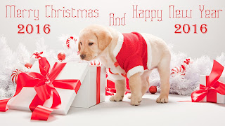 Merry Happy New Year 2016 Images