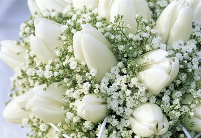 Forever wedding planner un fiore elegante e versatile la for Fiori piccoli bianchi