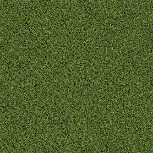Old Grass Texture Made Seamless