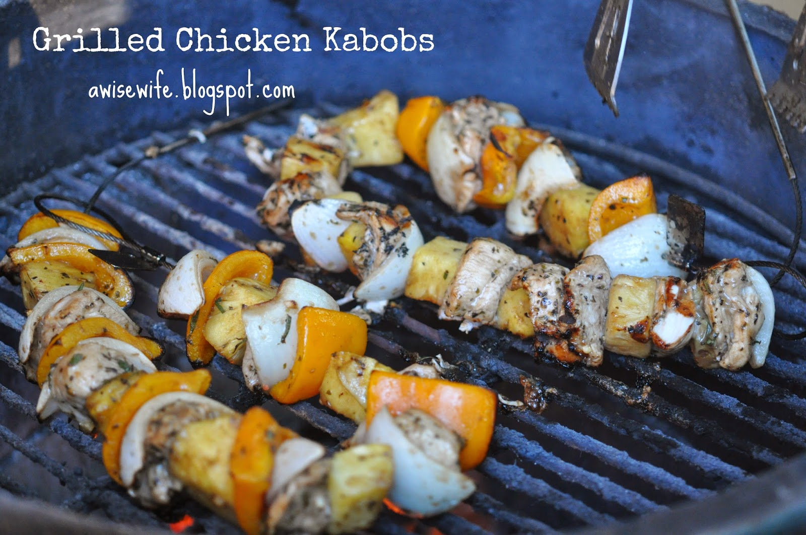 Life of a Wise Wife : Grilled Chicken Kabobs