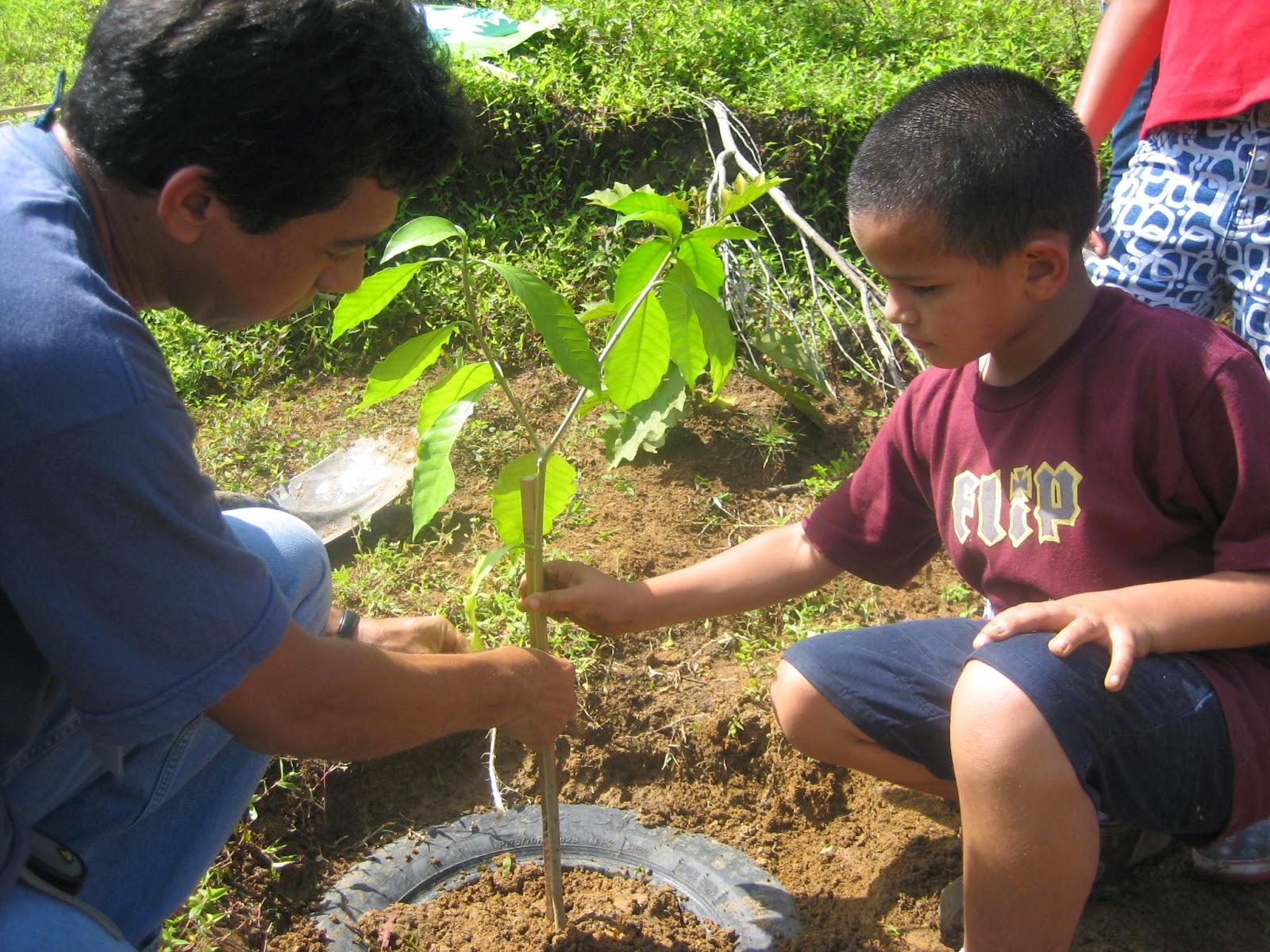Alternativas para cuidar el medio ambiente cuida el medio - Como humidificar el ambiente ...