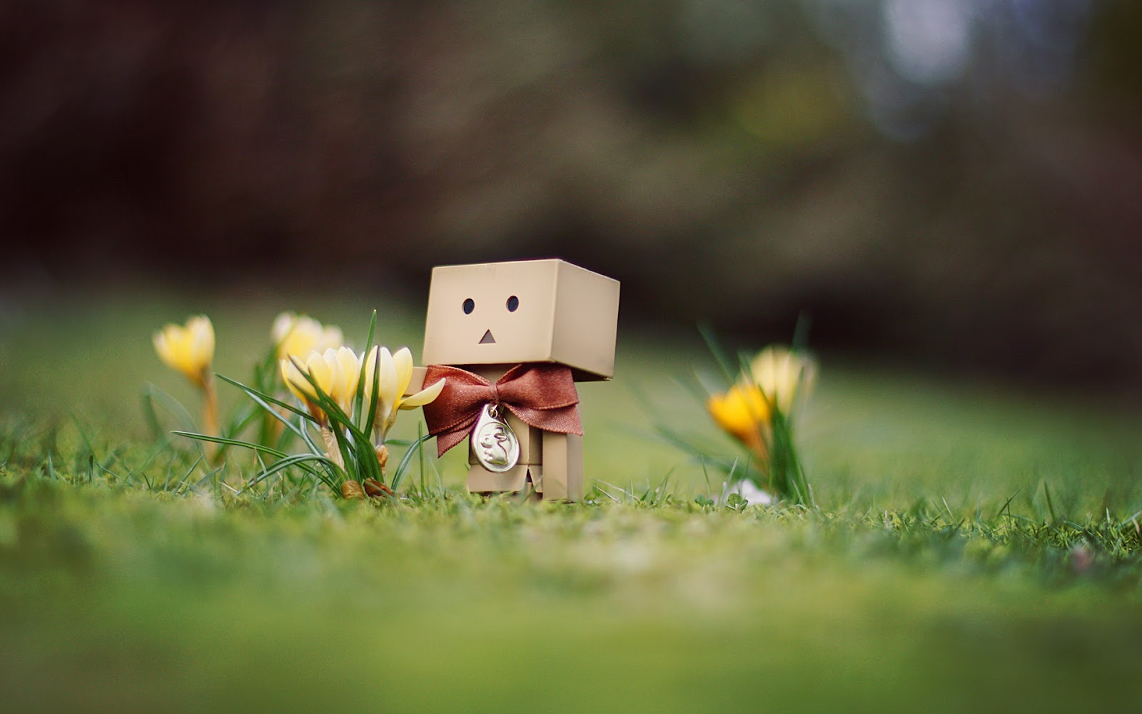 Cute Robot Love Wallpaper Robot Wallpaper