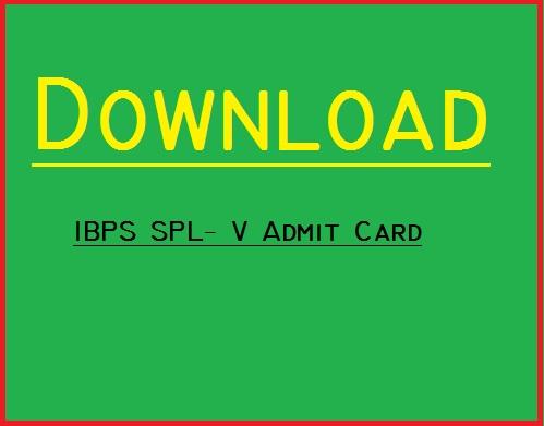 IBPS SPL V Admit Card 2016- Download Admit Card for IBPS SPL-V