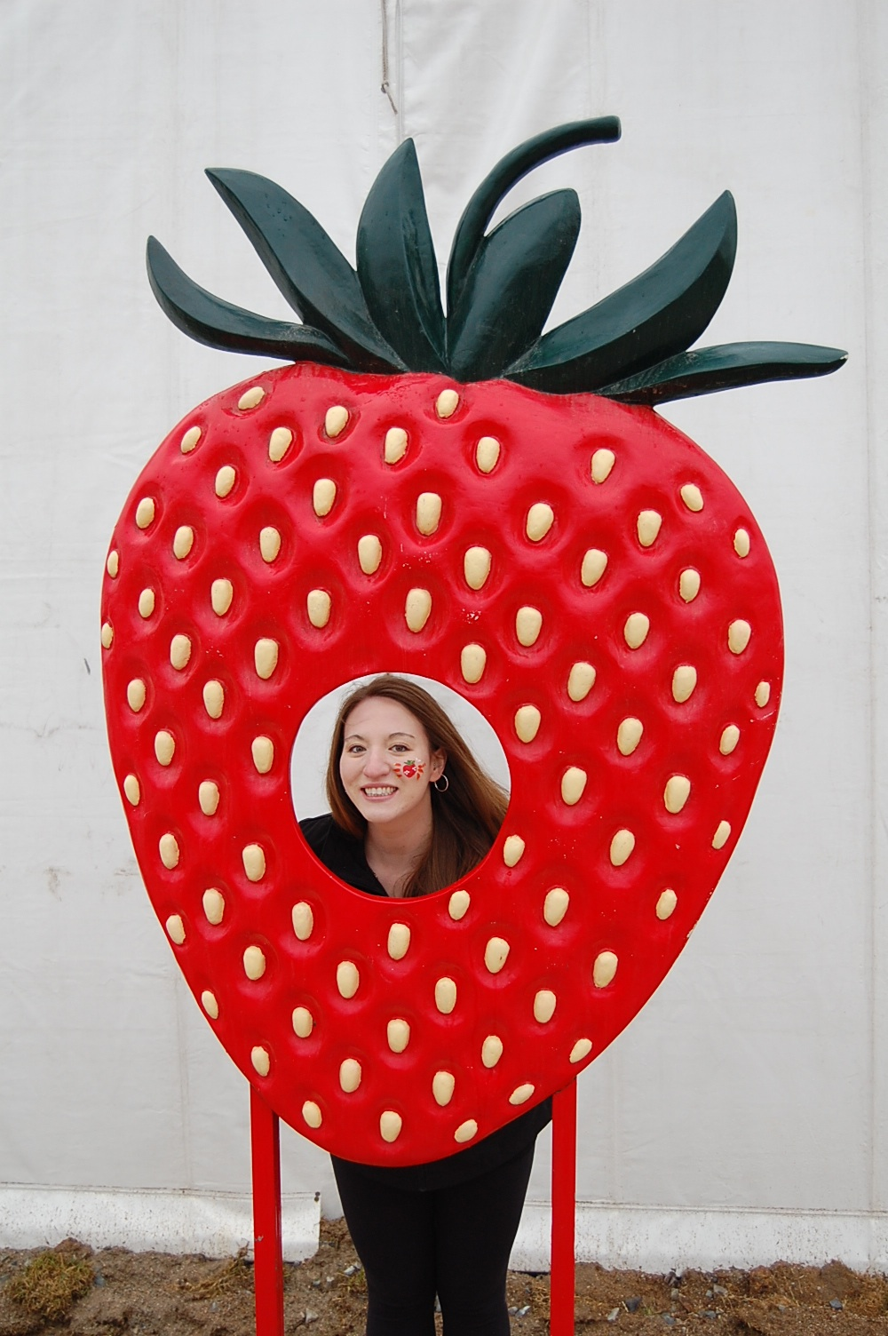 The centrepiece of the festival was this large tent filled with hundreds of different strawberry-related objects.  sc 1 st  Pilgrim with a Passport & Pilgrim with a Passport: Nonsan Strawberry Festival