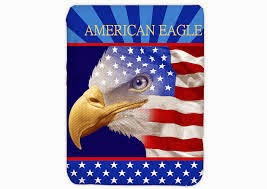 Grosir Selimut Kendra Soft Panel Blanket American Eagle