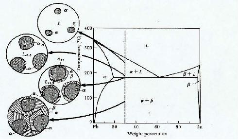 Diagram fasa pb sn meine notizen gambar 2 pembentukkan struktur mikro pada komposisi 30 sn ccuart Choice Image